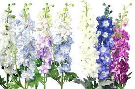 roll out flower garden flowers in garden flower garden by garden flowers