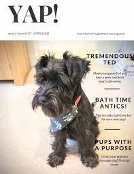 Make Bathtime Fun For Your Dog Magazines