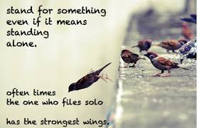 fly birds quotes inspiration inspirations idolations