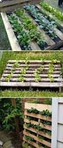 How To Build A Raised Flower Bed 95 Best Gardening Homesteading For Profit Images On Pinterest