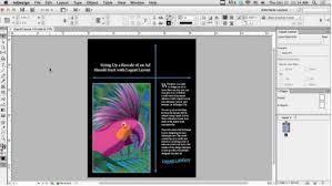 indesign tutorials for beginners cs6 25 indesign tutorials for beginners xdesigns
