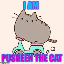 Pusheen The Cat Meme - pusheen scooter memes imgflip