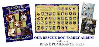 dog photo album our rescue dog album by dog behavior specialist pet expert