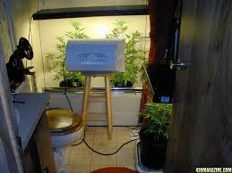 small room design small indoor grow room ideas indoor marijuana