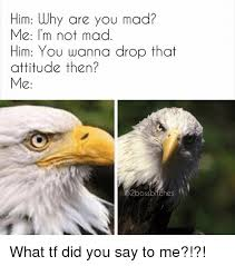 Are You Mad At Me Meme - him why are you mad me i m not mad him you wanna drop that attitude