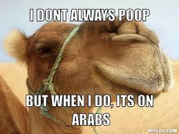 Camel Memes - camel meme i don t always poop but when i do its on arabs picsmine