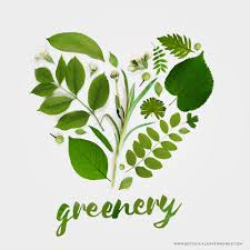 greenery more than a color of the year blog botanical paperworks