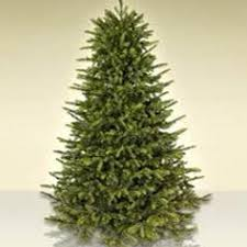 christmas tree images best 9 ft christmas tree for sale in laval quebec for 2018