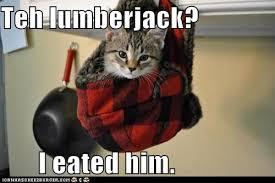 Lumberjack Meme - i can has cheezburger lumberjack funny animals online cheezburger