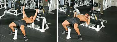 Bench Press For Biceps - chest biceps blasting