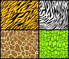 animal print patterns royalty free cliparts vectors and stock