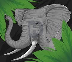 how to draw a elephant for kids step by step by darkonator