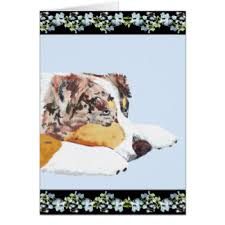 4 australian shepherd x dalmation cute australian shepherd dog note cards zazzle