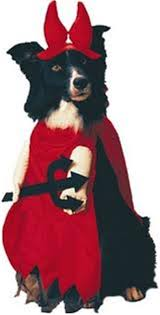 Halloween Costume Large Dogs Buy Fitco Pet Halloween Products Halloween Costumes