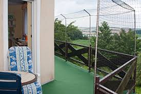 balkon katzensicher machen balkon katzensicher dekor alles bild für ihr haus design ideen