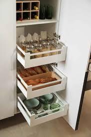 modern kitchen organization 24 best kitchen look images on pinterest modern kitchens