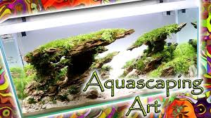 Aquascape Chicago Aquascaping Art Most Beautiful Tanks Ever Ada Aquascape