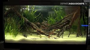 Aquarium Aquascaping Aquascaping Aquarium Ideas From Zoobotanica 2013 Pt 5 Youtube