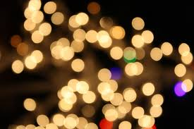 blurred christmas lights white picture free photograph photos