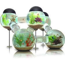 bubble aquarium designs best delhi fish aquarium services