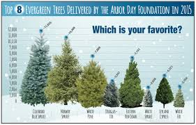 which trees did you buy this season arbor day