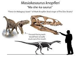 masiakasaurus konpfleri reconstruction du squelette de carrano et