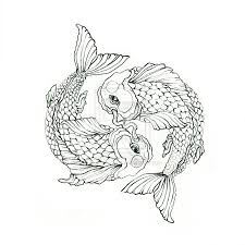 latest koi fish tattoo sample photos pictures and sketches