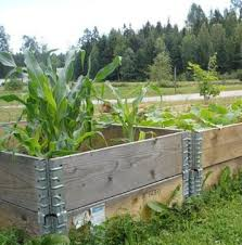 Raised Garden Beds From Pallets - to make your own raised garden out of pallets