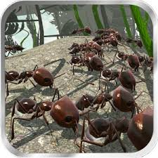 ant downloader apk ant simulation 3d mod apk android storage