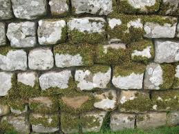 stone wall texture 9 by random acts stock on deviantart
