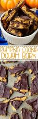 chewy pumpkin chocolate chip cookies fall desserts chip cookies