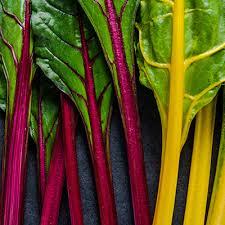 incredibly edible vassar college wellness tips incredibly edible stems vassar