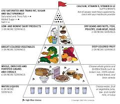 tufts food guide pyramid for adults dietary