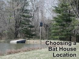 how to choose a bat house location bat conservation and how to choose a bat house location