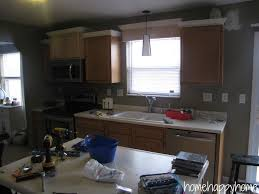 Touch Up Kitchen Cabinets Black Kitchens And Kitchen Cabinets On Pinterest Idolza