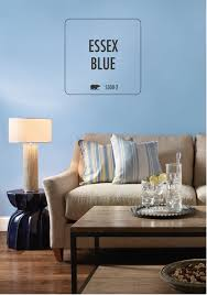 Shades Of Blue Paint by Decoration Home Interior Sritjt Com U2013 Decoration Home Interior