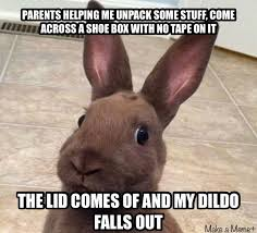 Dildo Memes - i know this is not the right meme but it was a rabbit thought