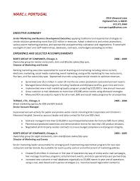 Examples For Resume by Summary Examples For Resume Best Business Template