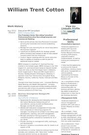 Senior Executive Resume Examples by Hr Consultant Resume Samples Visualcv Resume Samples Database