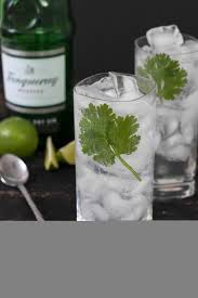 vodka tonic recipe cilantro lime gin u0026 tonic cake u0027n knife