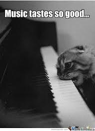 Music Memes - music memes 皓 piano studies la