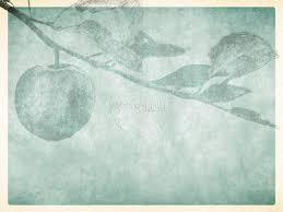 bible sermon outline on thanksgiving bearing fruit powerpoint sermon slides fall thanksgiving powerpoints