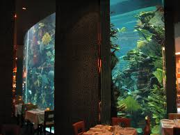 Dining Room Table Pads Reviews Photos Hgtv Rustic Dining Room With Built In Fish Tank Clipgoo
