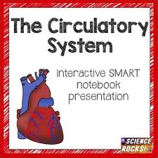 this bundle includes a smart notebook presentation on the
