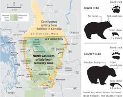 Washington State Mountains Map by Teeth Bared Over Proposal To Return Grizzlies To Cascades The