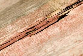 how to repair a wood floor that has been oversanded home guides