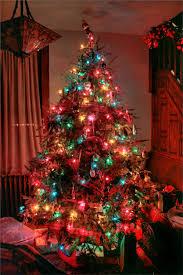 exquisite design white light tree lights best images