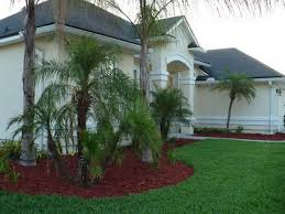 small and simple palm tree landscaping design for home exterior