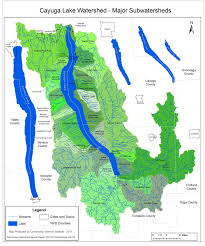 the watershed cayuga lake watershed network