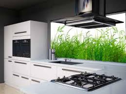 glaspaneele küche glaspaneele küche getherpeset net